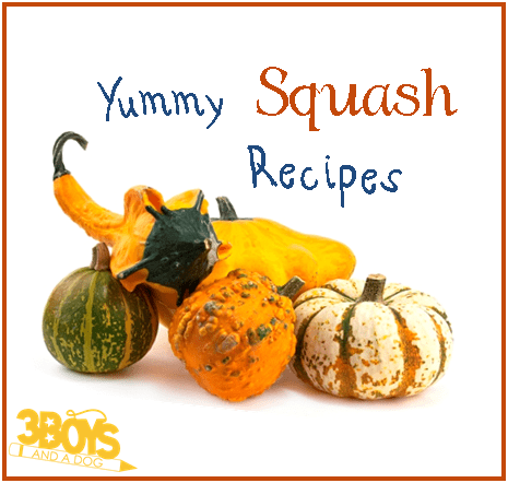 17 different winter squash recipes!