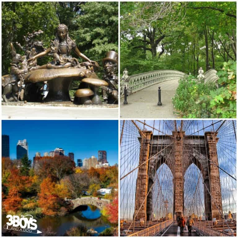 Places to See by Bike in New York City
