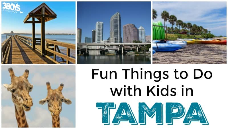 Fun Things to Do with Kids in Tampa - 3 Boys and a Dog