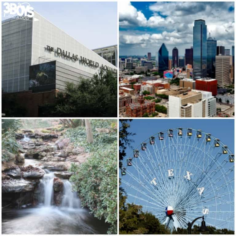Kid-Friendly Attractions in Dallas