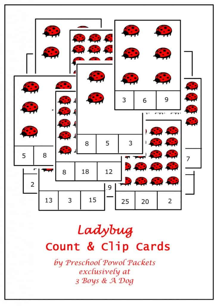 ladybug count and clip card cover