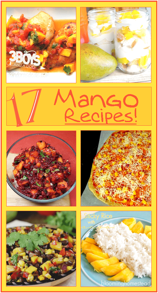 Easy Mango Recipes