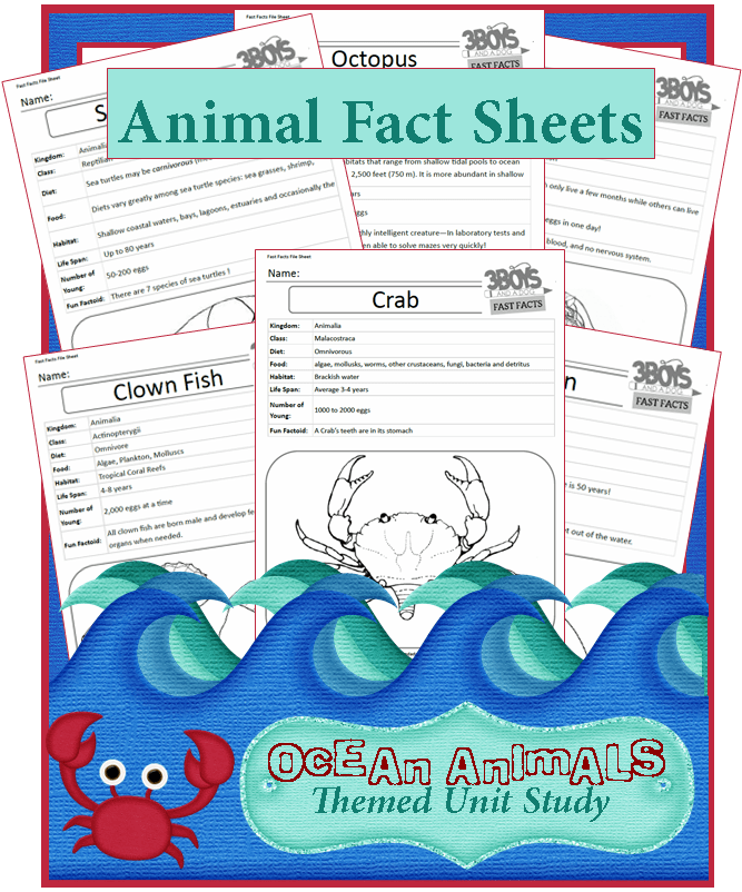 Ocean Animals Fact Files - Free Printable Worksheets