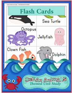 Ocean Animals Unit Study: Reading Flash Cards
