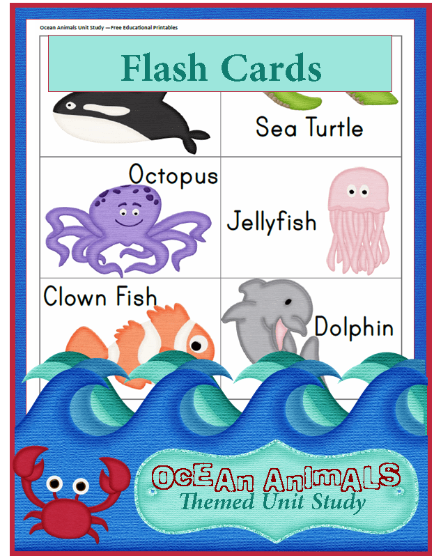 ocean animals unit study