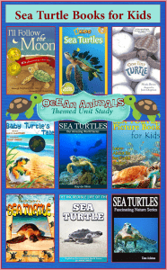 Sea Turtle Books for Kids  {Ocean Animals Unit Study}