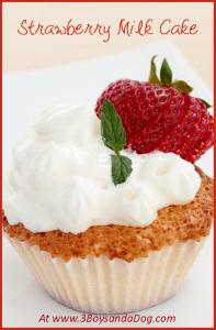 Chocolate Strawberry Milk Cake