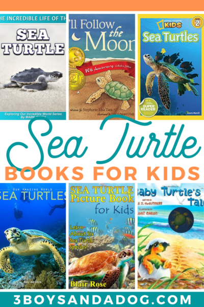 your turtle loving child is going to really enjoy these sea turtle books for children