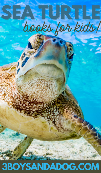 grab some of these sea turtle themed books for kids