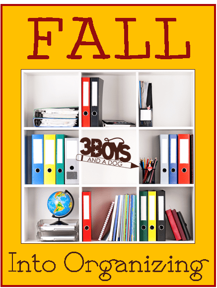 Fall into Organizing