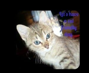 Take the Sam's Club Purina Paws For Life Pledge