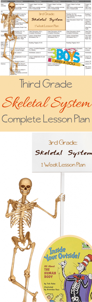 This is a long post... however, it has literally everything you need to complete the week-long Skeletal System Unit Study.