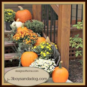 Fabulous Fall Decorating Ideas - Front Steps - 3boysandadog.com