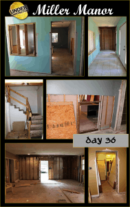 Miller Manor Day 36: Over a Month of Renovations!