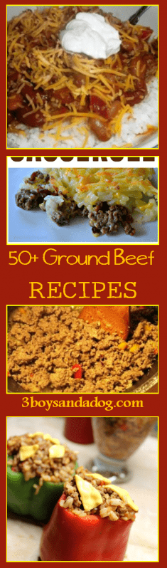From patties and meatloaves to soups, stews, and casseroles.  On pizza or wrapped in breads, one of these over 50 hamburger meat recipes are sure to please you and your family!