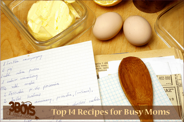 Top 14 Recipes for Busy Moms