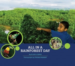 book_-_all_in_a_rainforest_day_grade_k-2_1