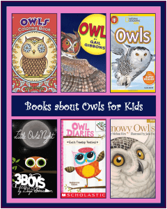 Owl Books for Children