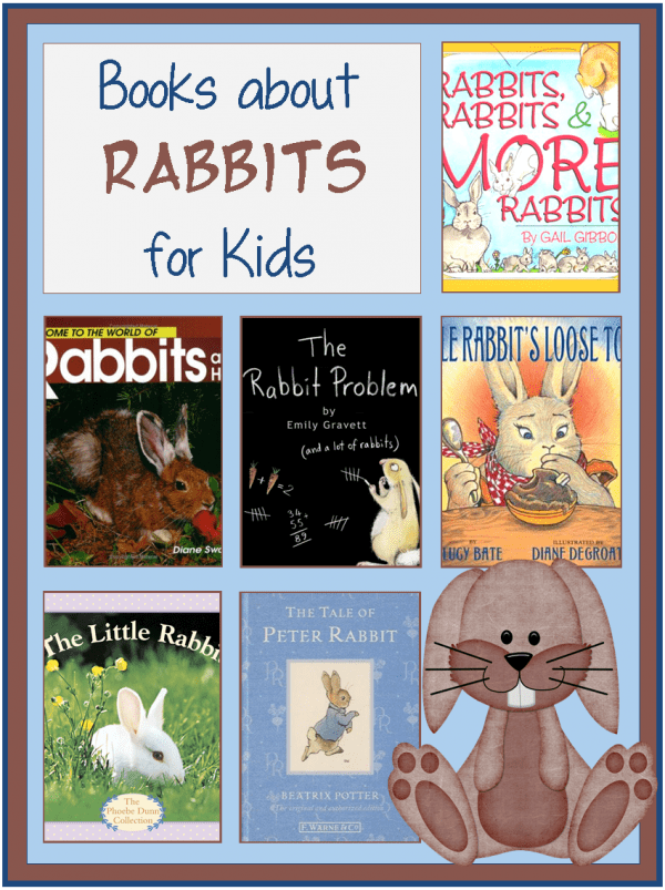 rabbit books for children
