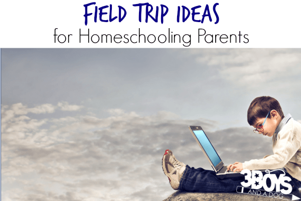 Simple Field Trip Ideas for Homeschooling Parents