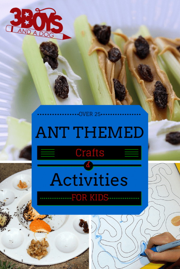 Ant Themed Experiments
