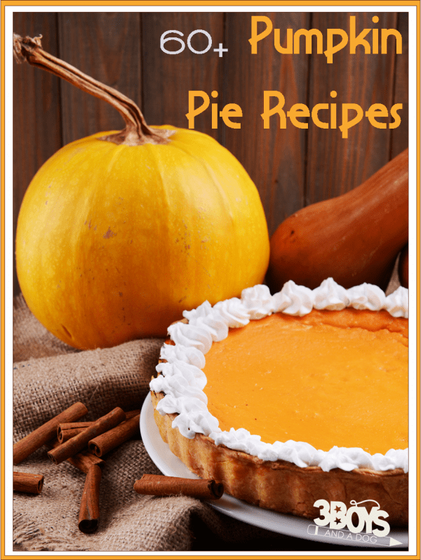 60 plus Easy Pumpkin Pie Recipes