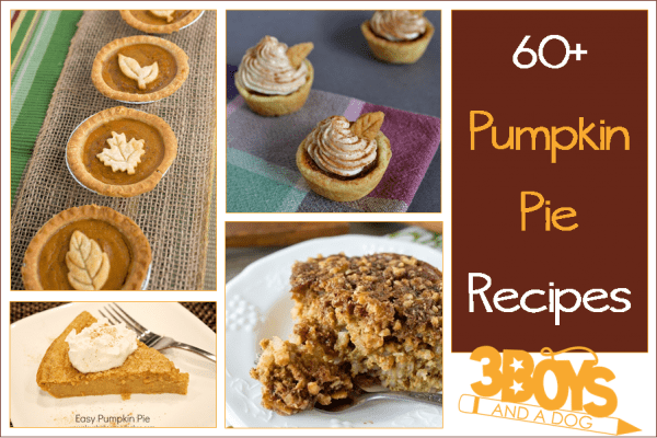 Over 60 delicious and easy pumpkin pie recipes