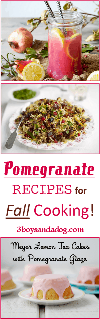 15 Pomegranate Recipes for Fall - from a complete dinner recipe to salad. From beverages to desserts. Adding in some pomegranate juice or seeds to make your next meal a healthy alternative!