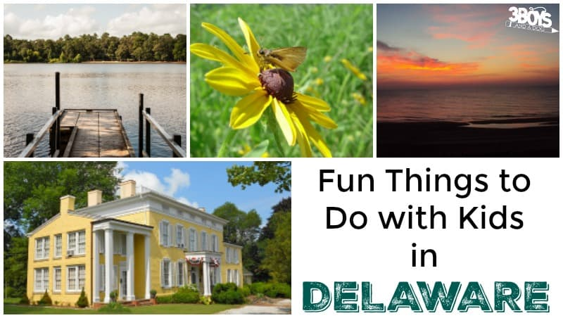 Fun Things to Do with Kids in Delaware