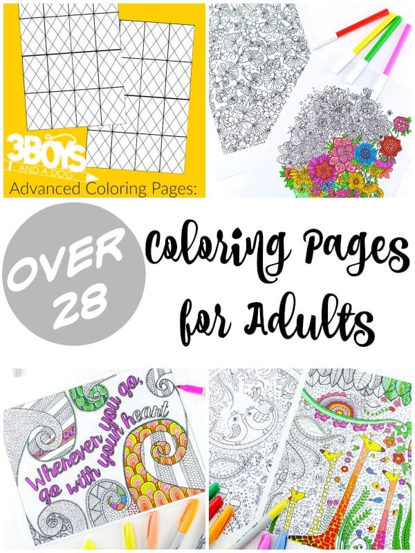 Over 28 Coloring Pages for Adults