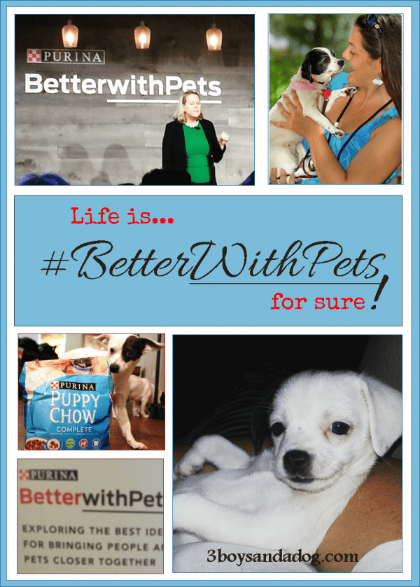 3 Benefits of Pet Ownership from the Purina Better with Pets Summit
