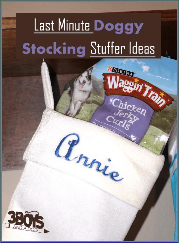 Last Minute Doggy Stocking Stuffer Ideas