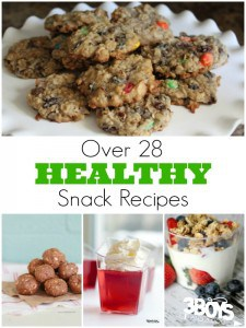 Over 28 Easy Healthy Snack Recipes