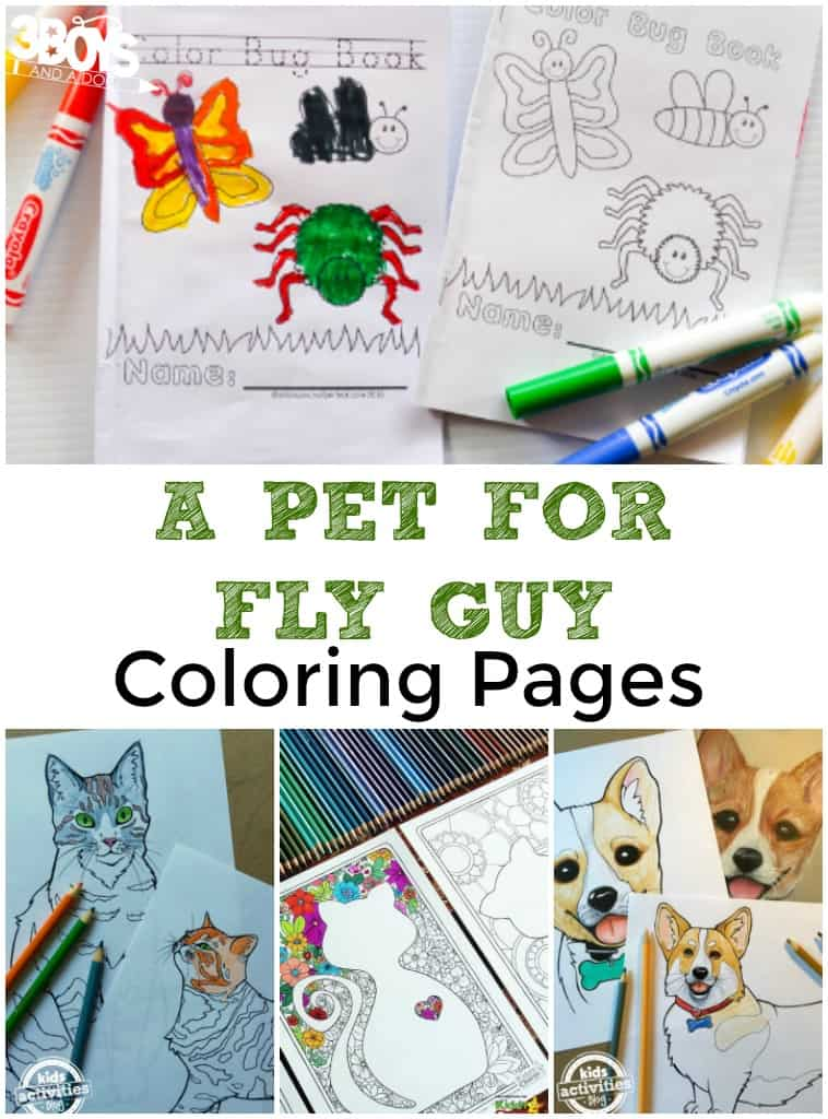 A Pet for Fly Guy Coloring Pages