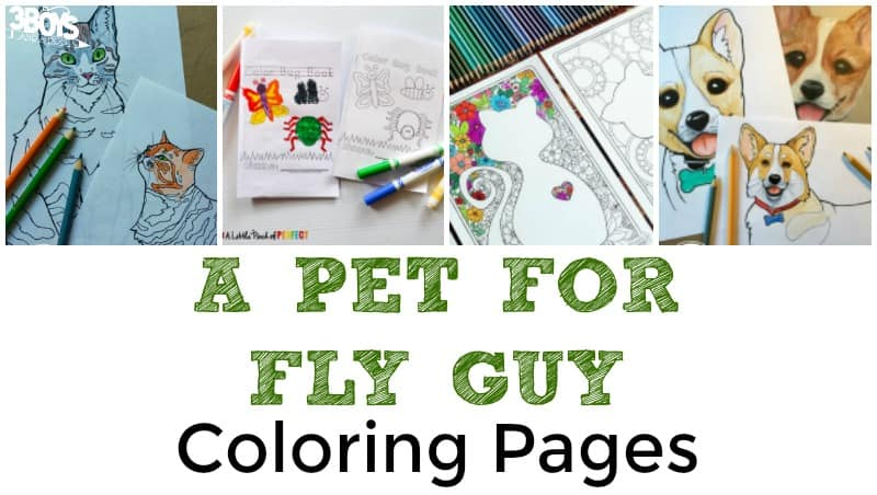 Pet for Fly Guy Coloring Sheets