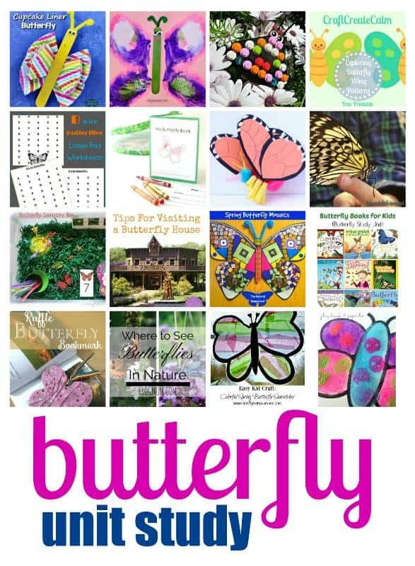 Themed Butterflies Unit Study