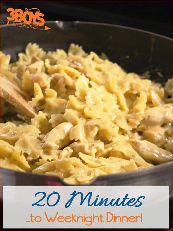 20 Minutes to Weeknight Dinner