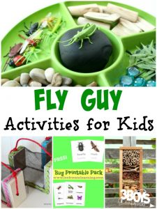 Fly Guy Activities for Kids