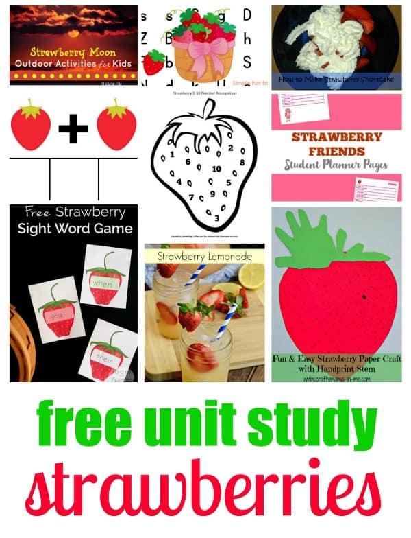 Strawberry Unit Study