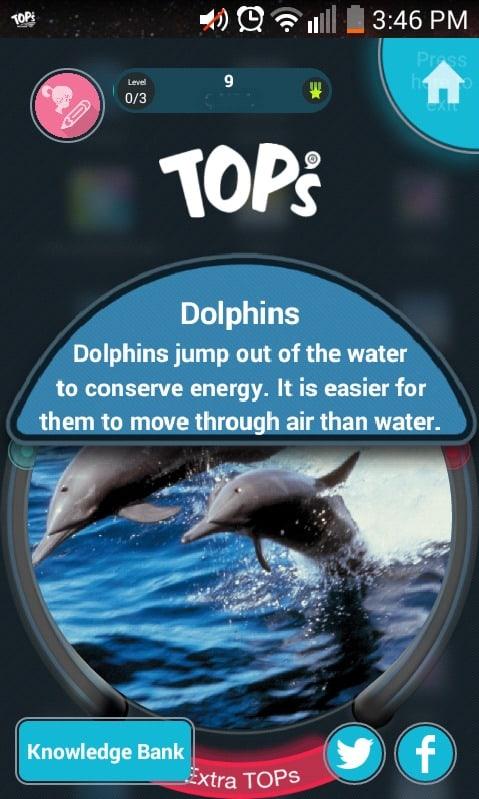 TOPs Balance Dolphin Fact