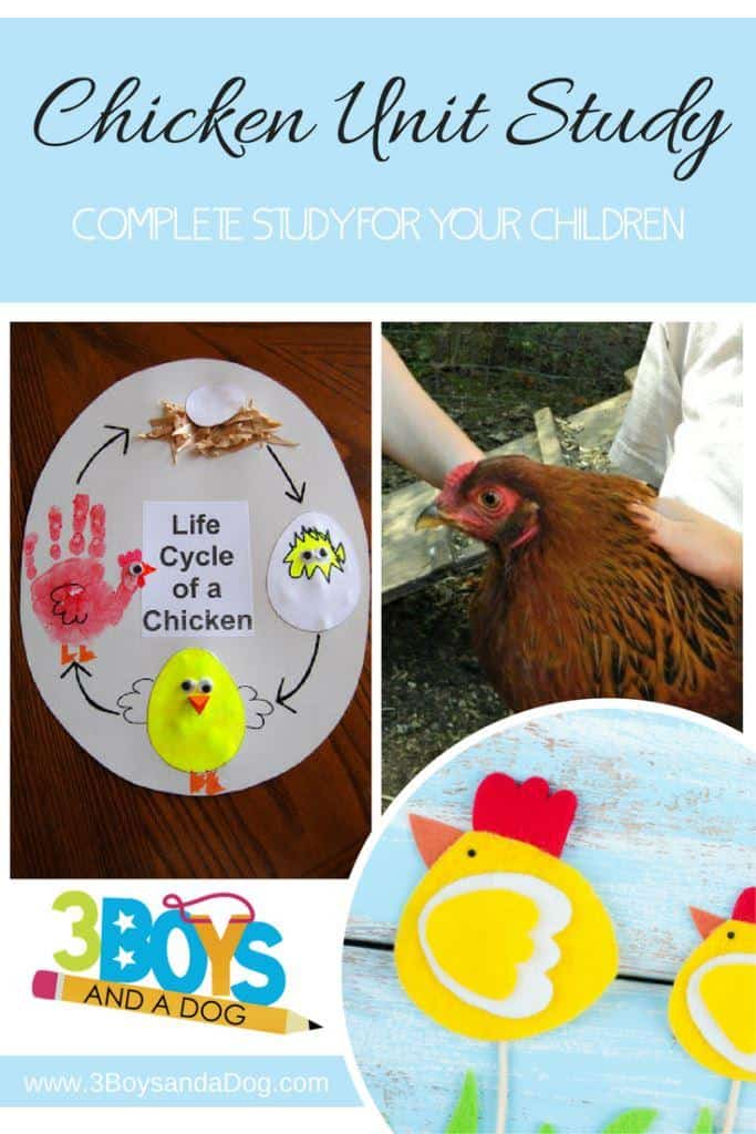 Chickens Complete Unit Study