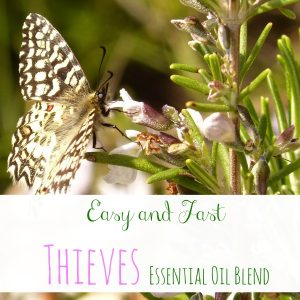 This thieves essential oil recipe mixes the best mix of antibacterial, antiviral, and anti-fungal oils that have a sweet, pleasant scent tat the whole family will love!