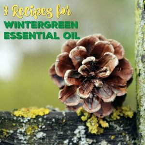 These Versatile Recipes Using Wintergreen Essential Oil offer three simple and invigorating ways to use wintergreen oil to brighten your day and treat the everyday aches and pains of life.