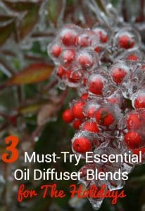 3 Must-Try Essential Oil Diffuser Blends for The Holidays