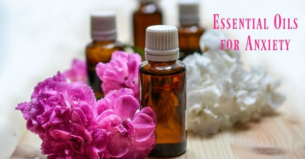 Essential oils for anxiety and stress 3 boys and a dog