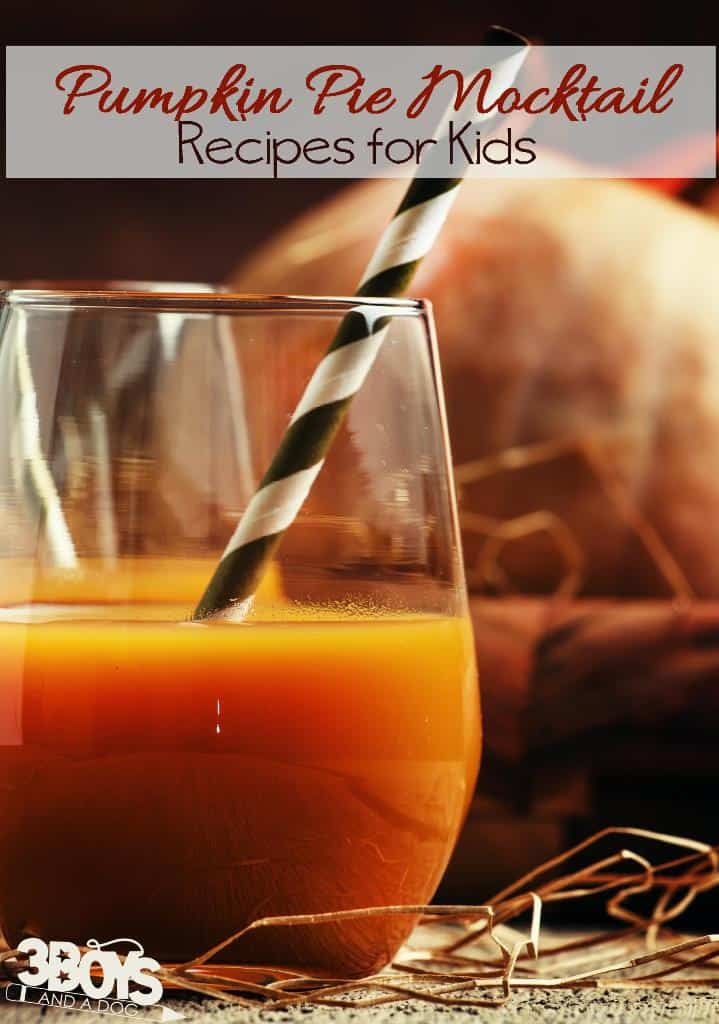 https://3boysandadog.com/pumpkin-pie-mocktail-recipe/