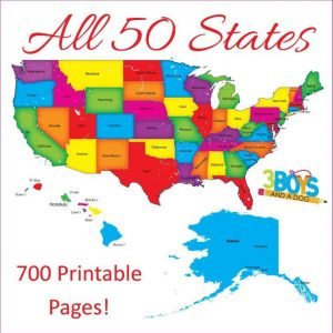 50 States Unit Study