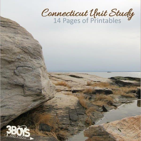 Connecticut State Unit Study.sq