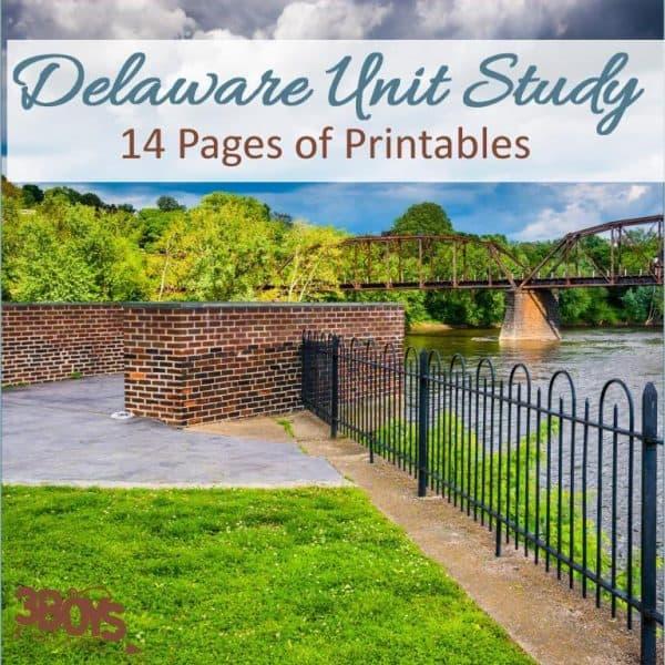 Delaware State Unit Study.sq