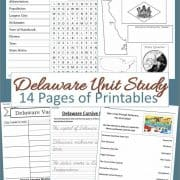 Delaware Unit Study 14 pages of printables